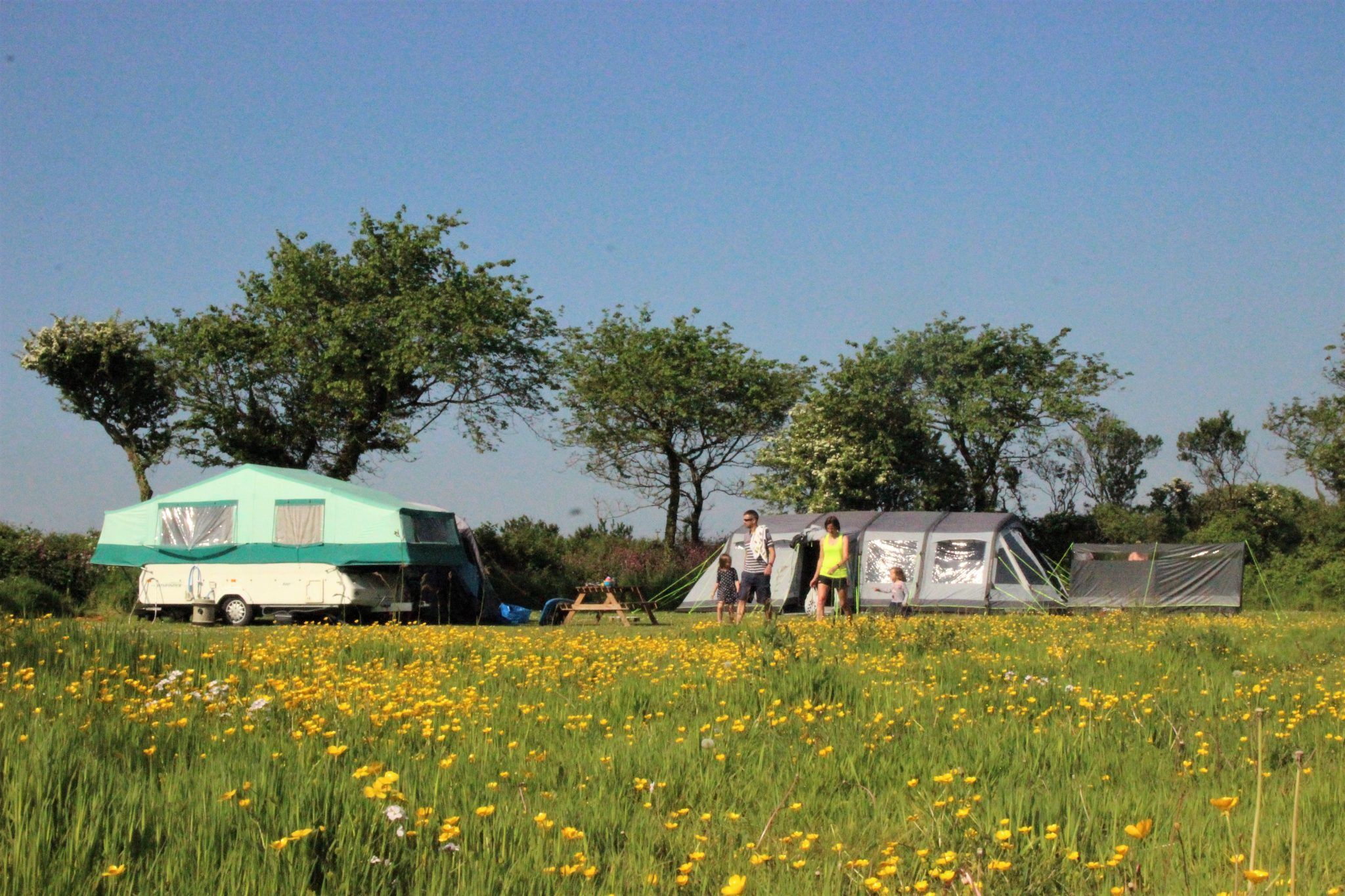 Tents, trailer tents, campervans, caravans and motorhomes - we've welcomed all sorts!
