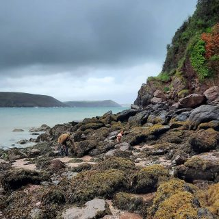 Beautiful autumn colours around the stormy shoreline right now. #stackpolecamp #beautyeverywhere #autumnvibes🍁 #visitpembrokeshirelater