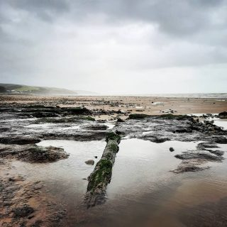 Exploring the submerged forest at Amroth at low tide. So cool seeing whole tree trunks exposed. AND... I saw an otter in the stream! Very exciting! Typically I had just put away my camera 🤦‍♀️so now you'll never believe me! #stackpolecamp #hiddenforest #submergedforest #ancientwoodland #pembscoast #visitpembrokeshire